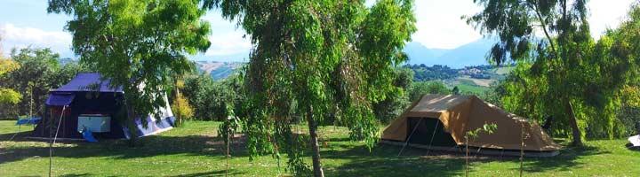 Tenten tussen de Eucalyptus bomen op de kleine camping