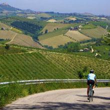 Villa Bussola services cycling